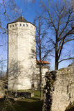 Tower of Vallitorn. Historical and cognitive center Wittenstein in tower of Vallitorn, Paide Estonia. Ruins in Paide.1256 stock images