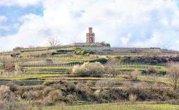 Tower in the vineyards Royalty Free Stock Images