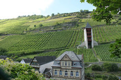 Tower and vineyards of the Rhine Royalty Free Stock Image