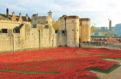 Tower von London mit Mohnblumen Stockfotografie