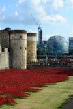 Tower von London Mohnblumen Lizenzfreie Stockbilder