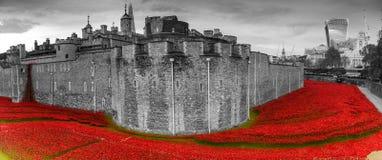 Tower von London Mohnblumenanzeige WW1 Lizenzfreie Stockfotos