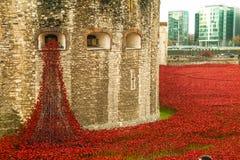 Tower von London Mohnblumenanzeige WW1 Lizenzfreie Stockbilder