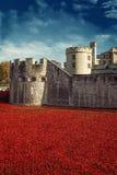 Tower von London am 12. November 14 Keramische Mohnblumeninstallation Lizenzfreie Stockfotografie