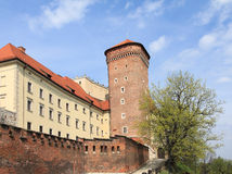 Tower of Wawel Royalty Free Stock Image