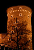 Tower at Wawel -  Krakow Royalty Free Stock Photography