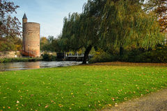 Tower and weeping willow in Minnewater park in Bruges, Belgium Royalty Free Stock Images