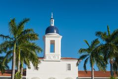 Tower of the white building among the palm trees. Royalty Free Stock Image