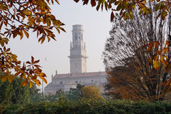 The tower and the window between the branches of trees Stock Photos