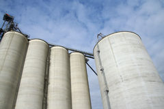 Towering Bins. Grain Bins Towering overhead, on a warm summer day in the midwest royalty free stock photo