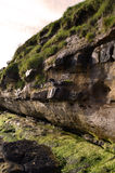 Towering Cliffs in Scotland. Scottish sea cliffs on the Isle of Skye Royalty Free Stock Photo