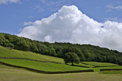 Towering Cumulus. A towering Cumulus cloud above a Summer rural scene Stock Images