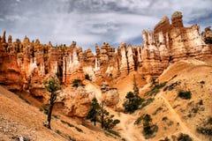 Towering Hoodoos at Bryce Canyon Stock Photos