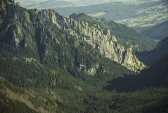 The towering limestone cliffs  dense coniferous forest Stock Image