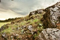 The towering limestone cliffs  dense coniferous forest Royalty Free Stock Images