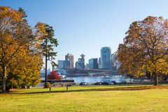 Downtown through the autumn leaves of Stanley park. Towers of a big city appearing in between of autumn colorful trees of public park, water divides  park with Royalty Free Stock Photography
