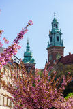 Towers of the Cathedral of Wawel. stock image