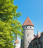 Towers of a fortification of Tallinn Stock Image