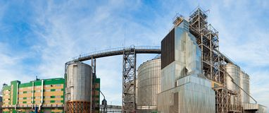 Towers of grain drying enterprise at sunny day Royalty Free Stock Photography