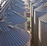Towers of grain drying enterprise at sunny day Royalty Free Stock Image