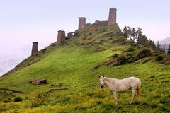 The towers in Omalo village. Tusheti region (Georgia) Stock Photos