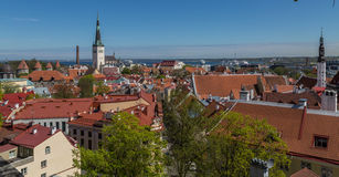 Towers And Roofs of old Tallinn. In Sprinhtime Stock Photography