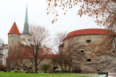 Towers of Tallinn. Estonia Stock Image