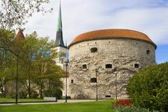 Towers of Tallinn. Estonia Royalty Free Stock Image