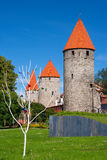 Towers of Tallinn. Estonia Stock Photo