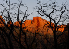 Towers of the Virgin, Zion National Park Royalty Free Stock Images