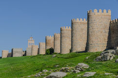 Towers of the walls Royalty Free Stock Image