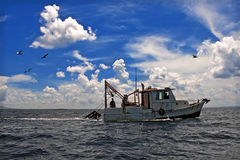 Towing Boat - Fishing boat. Pulling a net full of fish and shrimp. This type of fishing is very damaging to the fishing stock and the health of the sea bed royalty free stock photography
