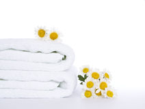 Towle and daisies Royalty Free Stock Photos