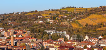 Town of Alba and autumnal vineyards. Stock Image