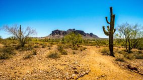 The town of Apache Junction at the foot of Superstition Mountain Royalty Free Stock Photography