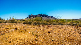 The town of Apache Junction at the foot of Superstition Mountain. In Tonto National Forest in Arizona, USA Royalty Free Stock Photography