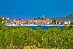 Town of Biogead naMoru and olive grove Royalty Free Stock Image