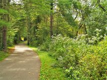 Town of Boone Greenway Trail. The Town of Boone`s Greenway Trail runs approximately four miles from one end of Boone to the other, ducking under roads Royalty Free Stock Photography