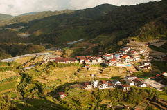 The town of growers in Cameron Highlands Royalty Free Stock Photo