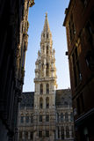 Town Hall, Groote Markt, Brussels Stock Photography