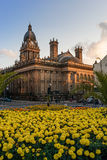 Town hall leeds Royalty Free Stock Photos