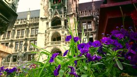 Town hall on the main square Marienplatz in the center of the Munich stock footage