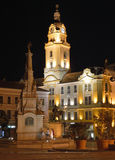 Town hall of Pécs with the statue of trinity Royalty Free Stock Images