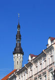 Town Hall Spire with Old Tomas on top in Tallinn, Estonia Royalty Free Stock Photography