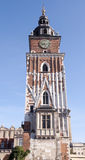 Town hall tower in Krakow. Gothic town hall tower with clock in Cracow, Poland Royalty Free Stock Photo