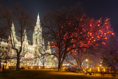 The Town Hall of Vienna in Winter Royalty Free Stock Photo