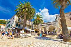 Town of Hvar palm promenade Stock Photography