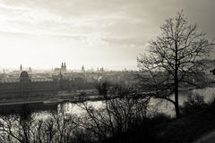 Town In Sepia Colour Royalty Free Stock Images