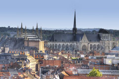 The town of leuven with saint peter's church and city hall Stock Images