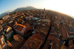 Town of Lucca in Tuscany Italy. As seen  with a fish eye lens Royalty Free Stock Photos